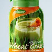 Morlife Wheat Grass Organic